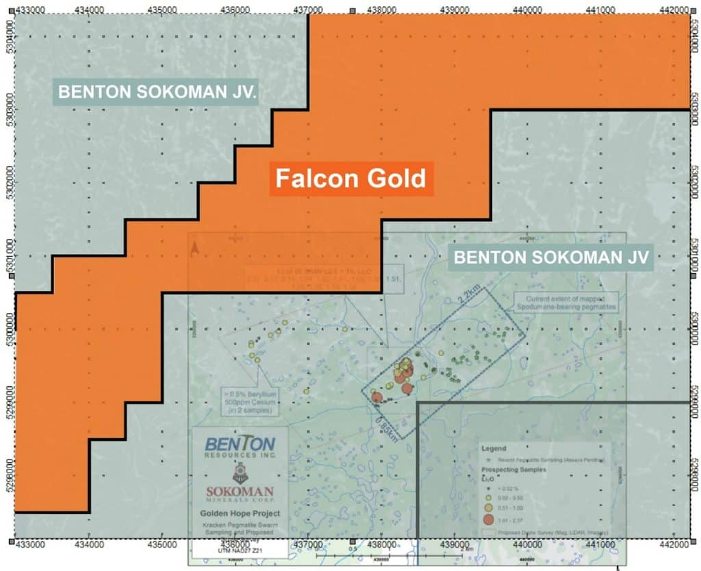 Regional location of Falcons Hope Brook gold property